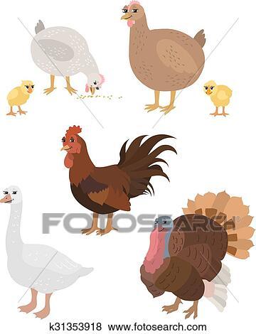 Clipart dessin anim ensemble poulet coq poulets - Dessiner une oie ...