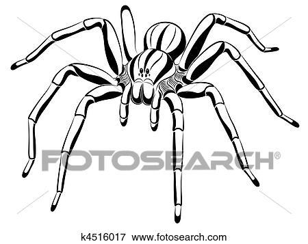 Clip Art Of Spider K4516017