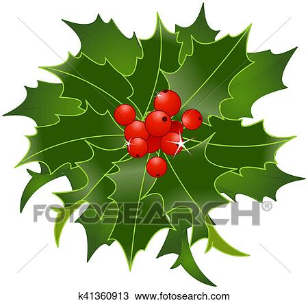 drawing of christmas holly berry k41360913 search clipart