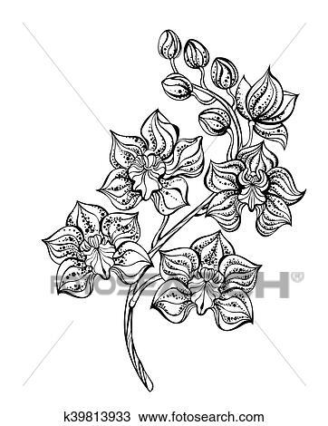 Dessin contour orchid e k39813933 recherchez des - Dessin contour ...