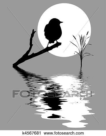 Clipart Petit Oiseau Sur Branche Arbre Entre Eau K4567681