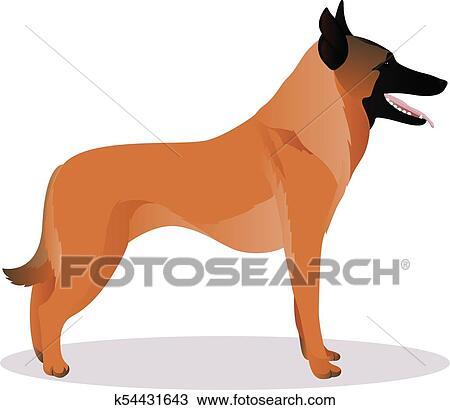 Malinois cartone animato cane clipart k54431643 fotosearch