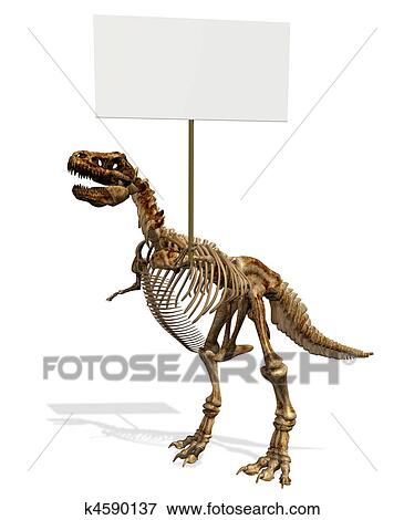 stock illustration of tyrannosaurus rex skeleton k4590137 search