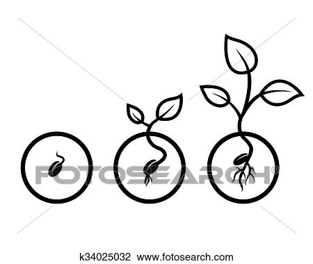 clip art of seed k34025032 search clipart illustration posters rh fotosearch com