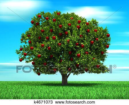 Dibujo rbol con manzana k4671073 buscar clip art for Arbol con raices y frutos