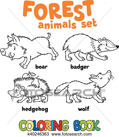 Clipart Of Forest Animals Coloring Book K40246363