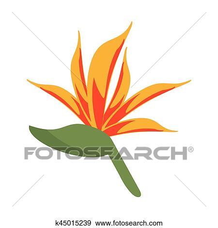 Oiseau Paradis Fleur Clipart K45015239
