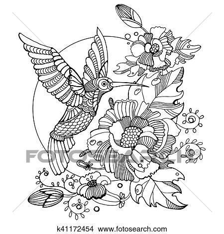 Clipart - colibrí, libro colorear, para, adultos, vector k41172454 ...