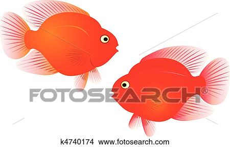 clipart of red parrot fish vector k4740174 search clip art