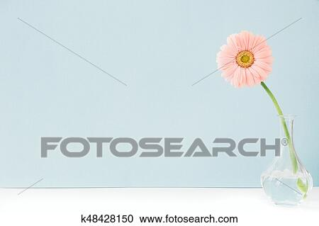 Stock Photography Of Pink Flowers In Vase On Table On Blue