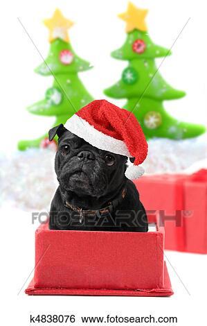Mops Bilder Weihnachten.Weihnachten Mops Geschenk Stock Illustration