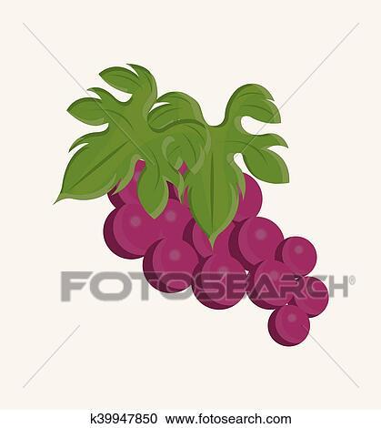 clipart vinho uva desenho isolado k39947850 busca de