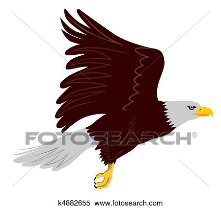 stock illustration of bald eagle flying side view k4882655 search