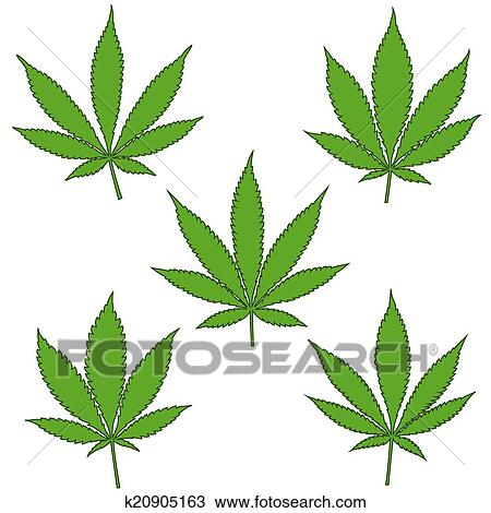 Set Of Natural Marijuana Leaves Clipart K20905163 Fotosearch