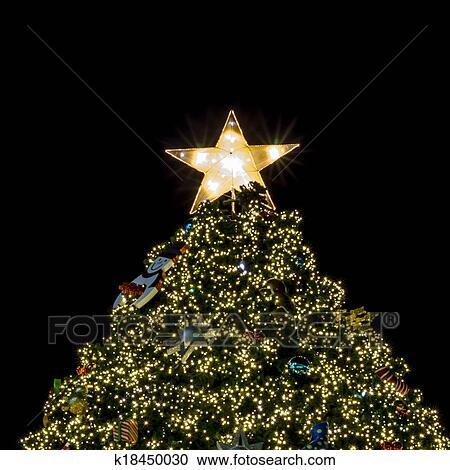 Weihnachtsbaum Mit Beleuchtung.Weihnachtsbaum Beleuchtung Stock Bild