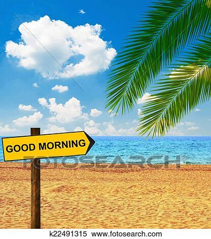 الشاطئ الاستوائي أيضا إخراج أركب قول صباح جميل معرض