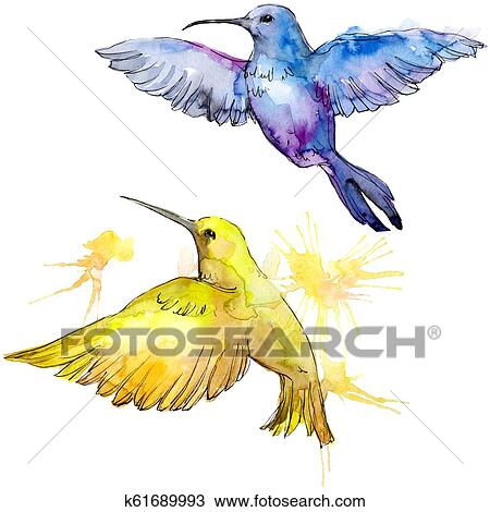 Sky Bird Colorful Colibri In A Wildlife By Watercolor Style