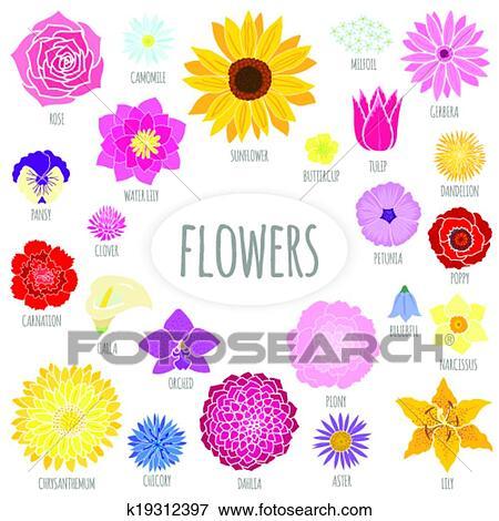 Satz, von, abstrakt, flache, flowers. Clip Art | k19312397 ...