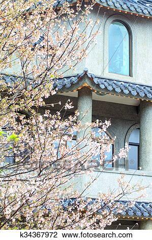 clipart templo oriental flor cereja estação em taipei taiwan