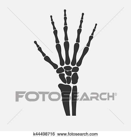 Clip Art - muñeca, manos, huesos k44498716 - Buscar Clip Art ...