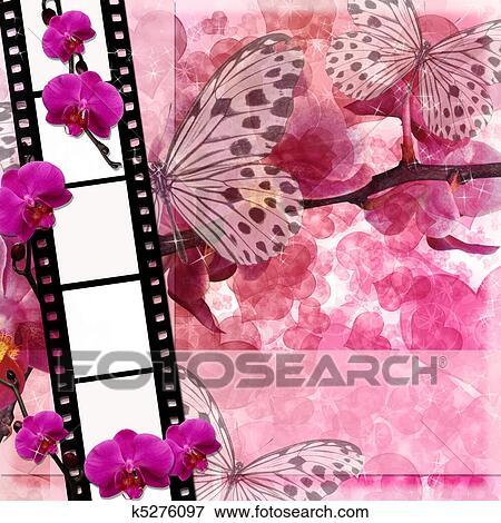 Farfalle E Orchidee Fiori Sfondo Rosa Con Film Frame 1 Di
