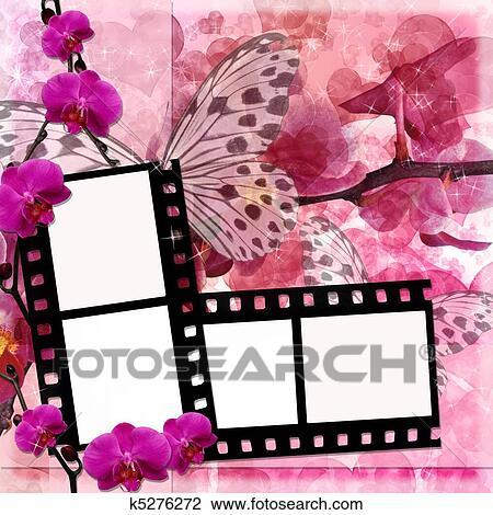 Farfalle E Orchidee Fiori Sfondo Rosa Con Film Cornice 1