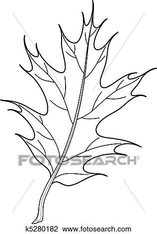 Clipart Of Leaf Of Iberian Oak Tree 2 Contours K5280182