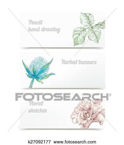 Vector Herbal Banners Clip Art K27092177 Fotosearch