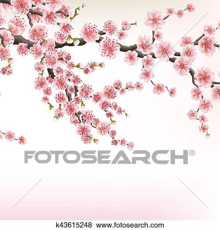 Clipart Fleur Cerisier Branches Eps 10 K43615248 Recherchez