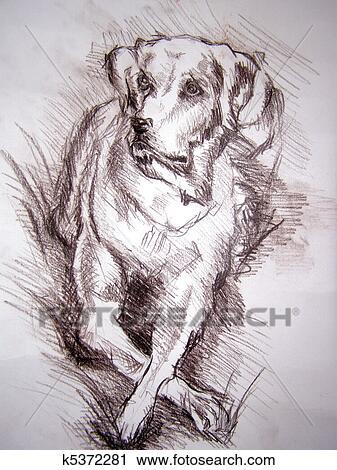Clipart Dibujo A Lápiz De El Perro K5372281 Buscar Clip Art