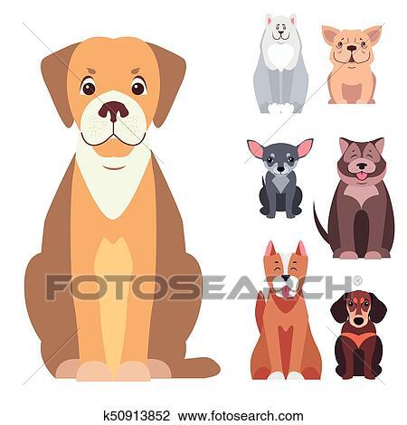 Il talento di mr peabody un beagle adotta un bambino scuola
