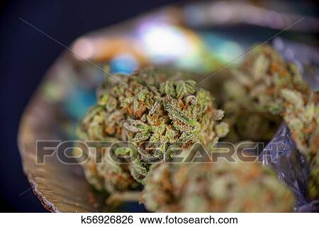 Cannabis buds (sour tangie strain) isolated on black inside abalone shell  Stock Photograph