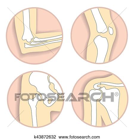 Clip Art of Set of human joints, elbow, knee, hip joint. skeletal ...
