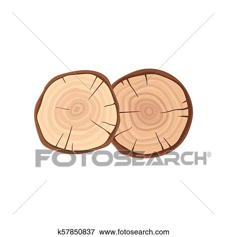 Two Cross Sections Of Tree Trunks With Annual Growth Rings