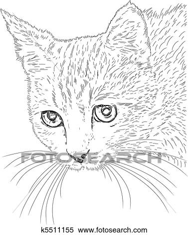 Tegninger av katter