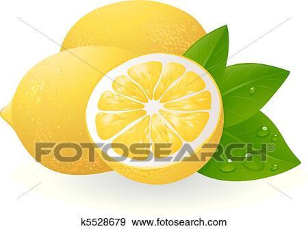 新鮮なレモン で 葉 クリップアート K5528679 Fotosearch