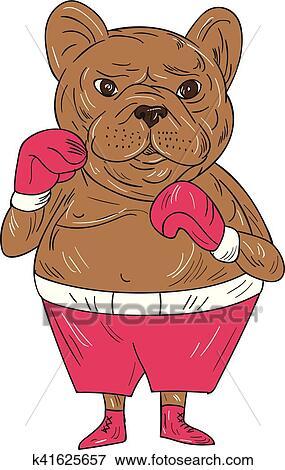 Bulldog francese pugile pugilato posizione cartone animato
