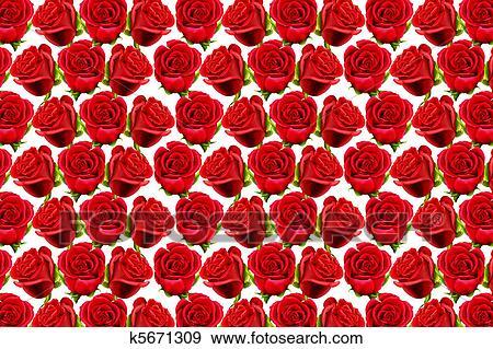 Rosas Padrão Para Forma Um Papel Parede Arquivos De Ilustração