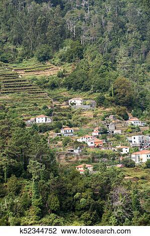 Banque De Photo Village Et Culture Terrasse Dans Les Environs