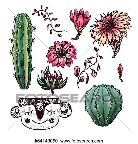 Potted Cacti And Succulents Plants Badge Collection Set Clipart