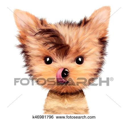 Stock Illustration Of Adorable Yorkshire Terrier Sitting Licking