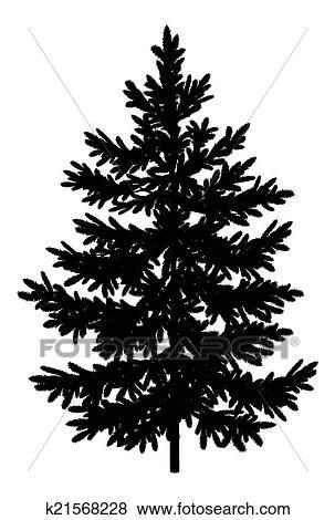 クリスマス トウヒ もみの 木 シルエット イラスト K21568228