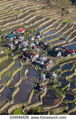 Mundo Herencia Arroz Terrazas En Batad Norteño Luzon Ifugao Provincia Filipinas Colección De Foto