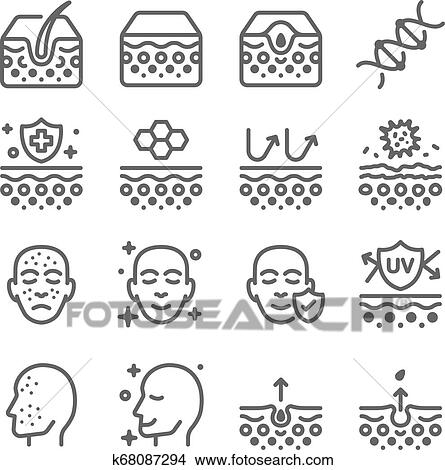 dna, outline, reflect, protection, face, acne, skin, illustration, diagram,  bacteria, care, pore, epidermis, dermis, formation, inflammation, vector,