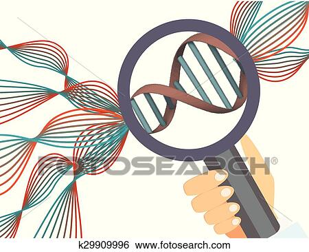 Clip Art Of Genetics IllustrationHuman Genome K29909996