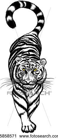 Clipart Noir Blanc Acroupissement Tigre K5858571 Recherchez
