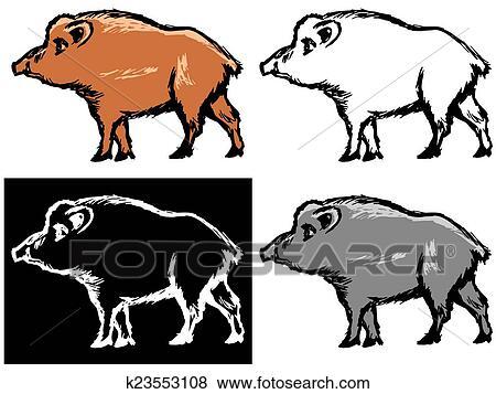 arquivos de ilustração javali selvagem k23553108 busca de clip