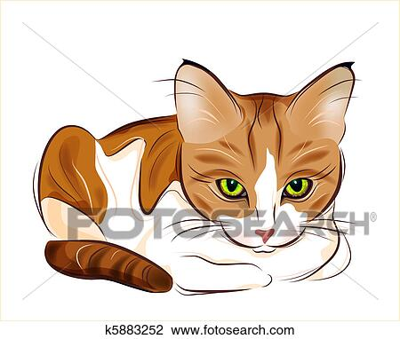 roztomilé nahé kočička fotky