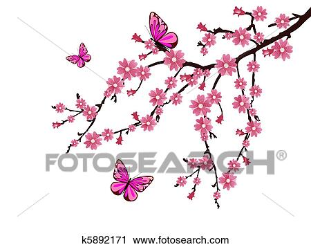 clipart of cherry blossom k5892171 search clip art illustration rh fotosearch com cherry blossom clipart black and white cherry blossom clipart flower