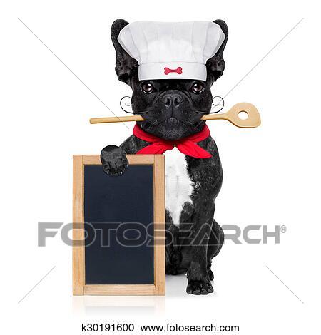 Chef cuoco cane archivio immagini k30191600 fotosearch
